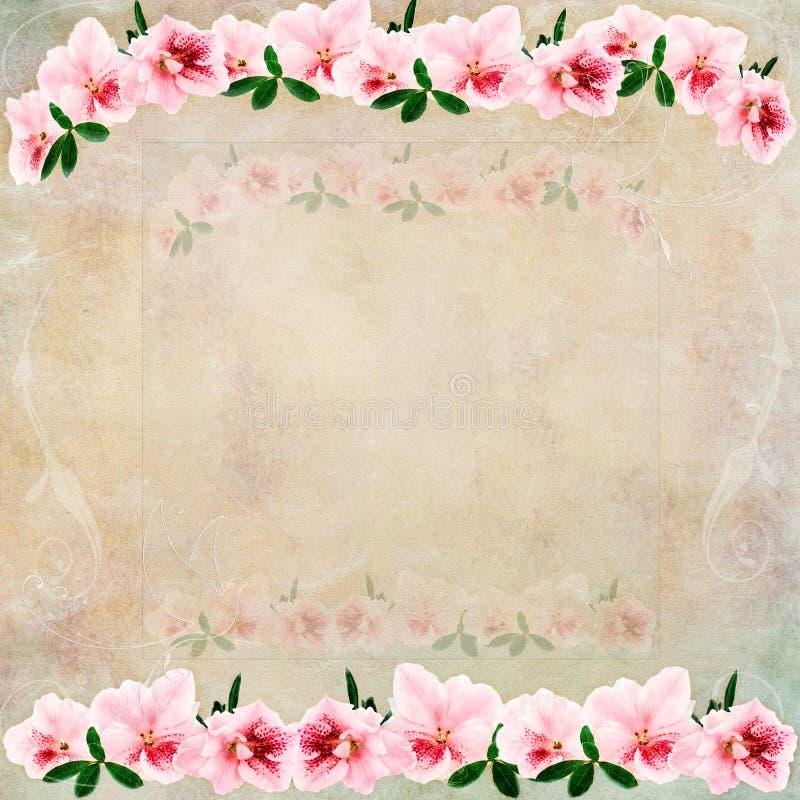 Weinlese-Blumenhintergrund lizenzfreie abbildung