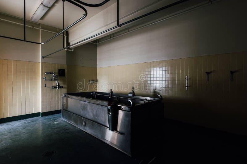 Weinlese-Edelstahl-Hydrotherapie-Wanne - verlassenes Sweet Springs - West Virginia lizenzfreie stockfotografie