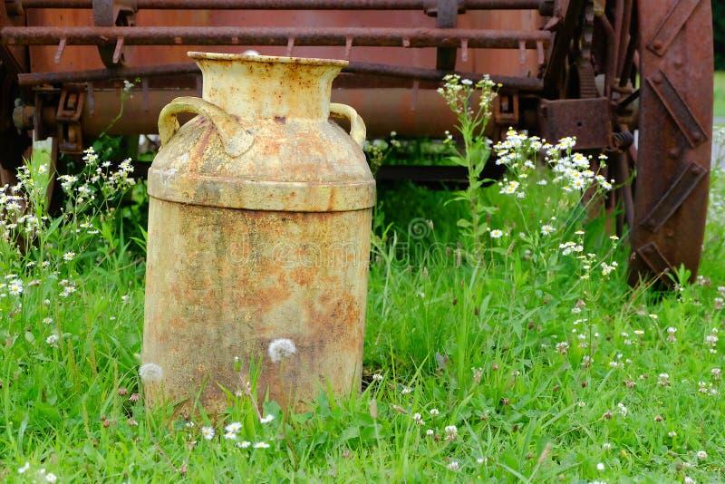 Weinlese-Milchkrug auf dem Gebiet stockbild
