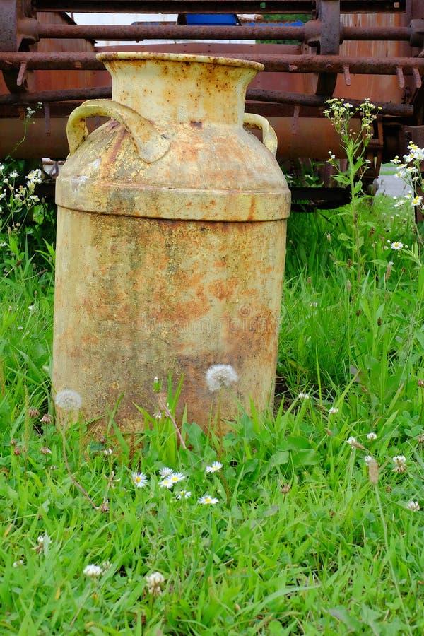 Weinlese-Milchkrug auf dem Gebiet stockfotografie