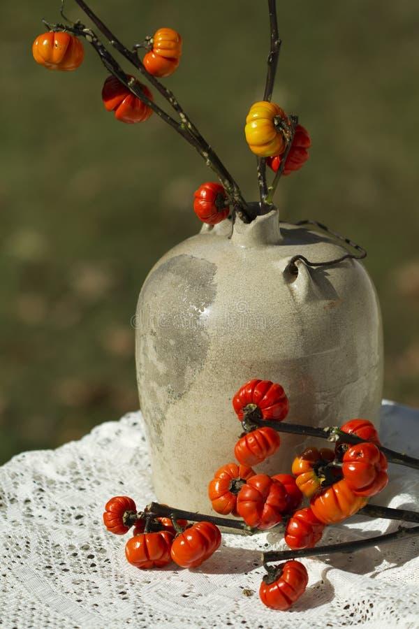 Weinlese Moonshine Krug-u. Kürbis-Baum-Zweige stockfoto