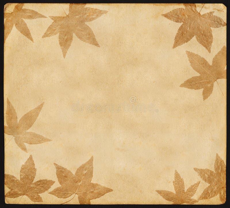 Weinlese-Papier mit Blättern vektor abbildung