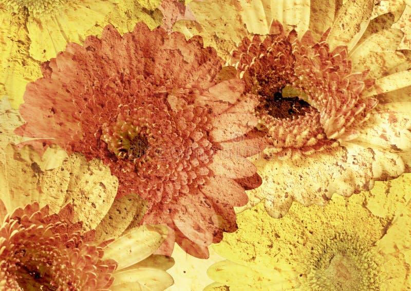 Weinlese redete Blumenabbildung an stockfotografie