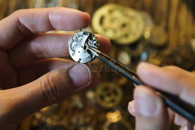 Weinlese reparierend, passt Triebabschluß oben auf lizenzfreie stockfotografie