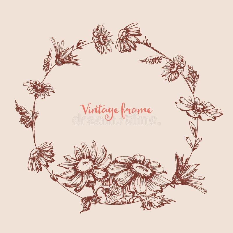 Weinlese-runder mit Blumenrahmen lizenzfreie abbildung