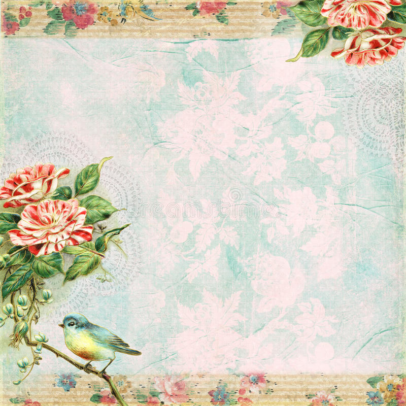 Weinlese-schäbiger Vogel-und Rosen-Hintergrund vektor abbildung