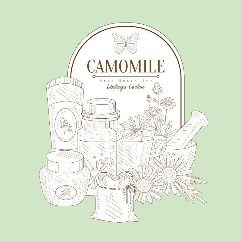 Weinlese-Skizze mit Kamillen-Kosmetik lizenzfreie abbildung
