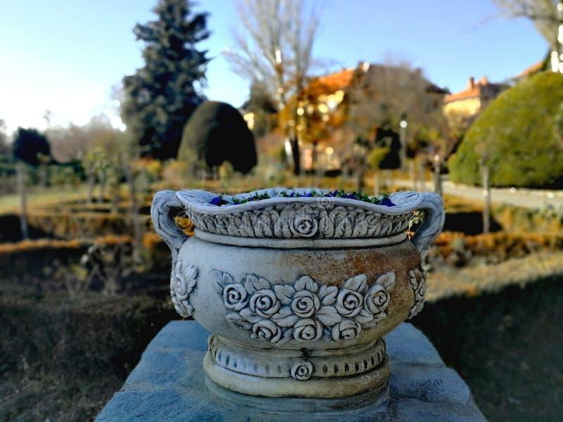 Weinlese-Vase stockfotos