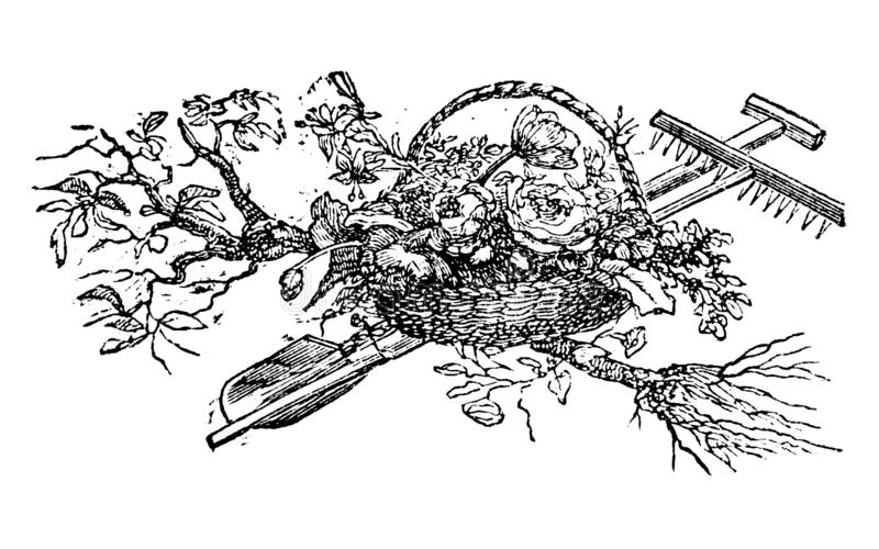 Weinlese-Vektor-Zeichnung oder Gravieren des antiken Dekorations-Entwurfs des Korbes mit Blumen und Gartenarbeit-Werkzeuge und Ba vektor abbildung