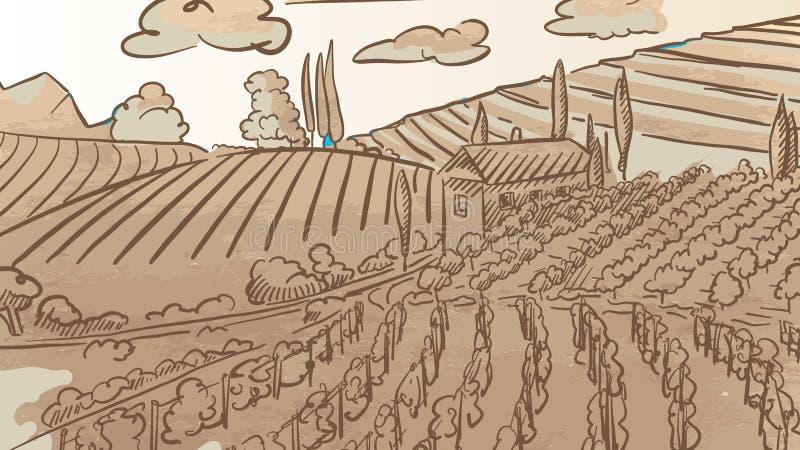 Weinlese-Weinberg Landcape-Zeichnung vektor abbildung