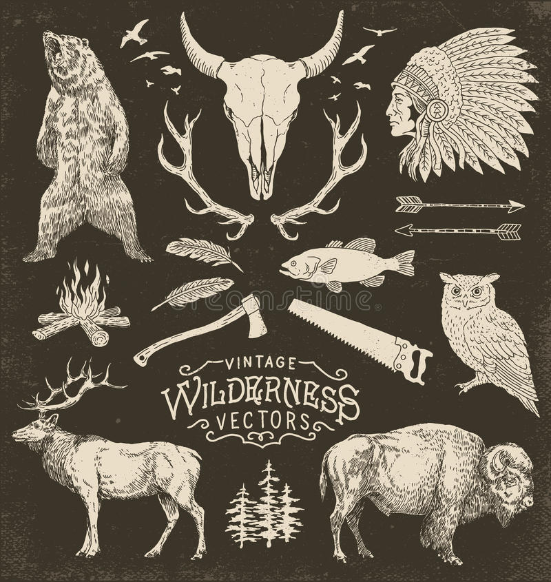 Weinlese-Wildnis-Vektor-Illustrations-Satz stock abbildung