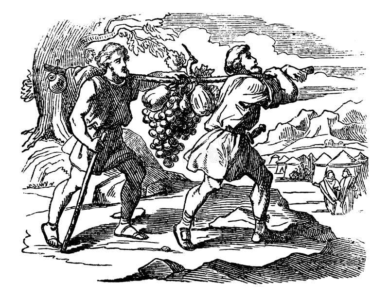 Weinlese-Zeichnung der biblischen Geschichte der Pfadfinder von den Israeliten, die mit Früchten zurückkommen Zwei Männer Carry L stock abbildung