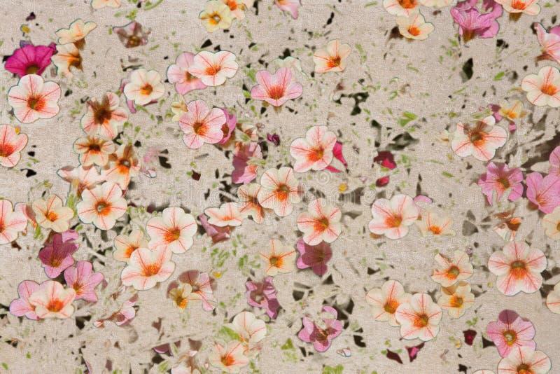 Weinlesebeschaffenheit mit rosa Flachsblumen stockfotografie