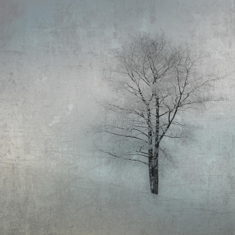 Weinlesebild eines Baums über grunge Hintergrund stockbilder