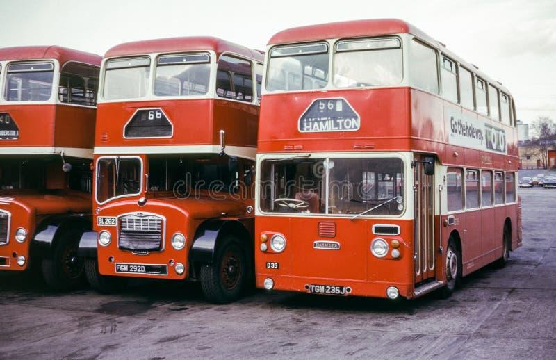 Weinlesebild von schottischen Bussen stockfotografie
