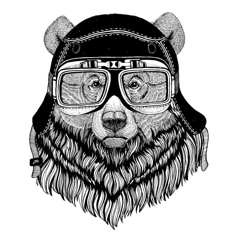 Weinlesebilder des Grizzlybären für T-Shirt entwerfen für Motorrad, Fahrrad, Motorrad, Rollerclub, aero Club lizenzfreie abbildung