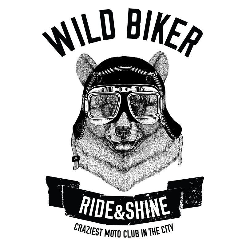 Weinlesebilder des schwarzen Bären für T-Shirt entwerfen für Motorrad, Fahrrad, Motorrad, Rollerclub vektor abbildung