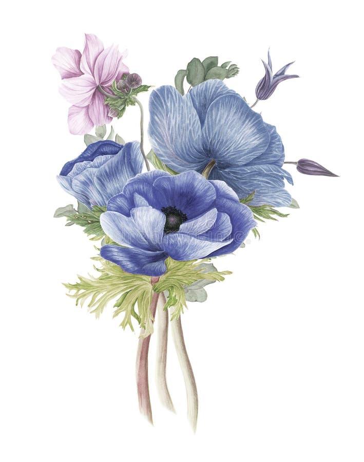 Weinleseblumenstrauß von Blumen: Anemonen, Klematis und Niederlassungen des Eukalyptus lizenzfreie abbildung