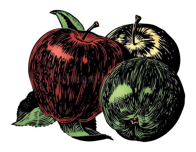 Weinlesefünfziger jahre Äpfel stock abbildung