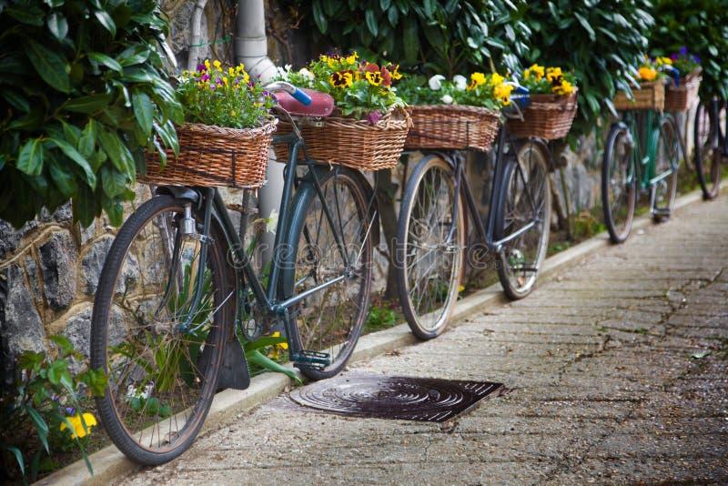 Weinlesefahrräder mit Glumensträußen stockbild