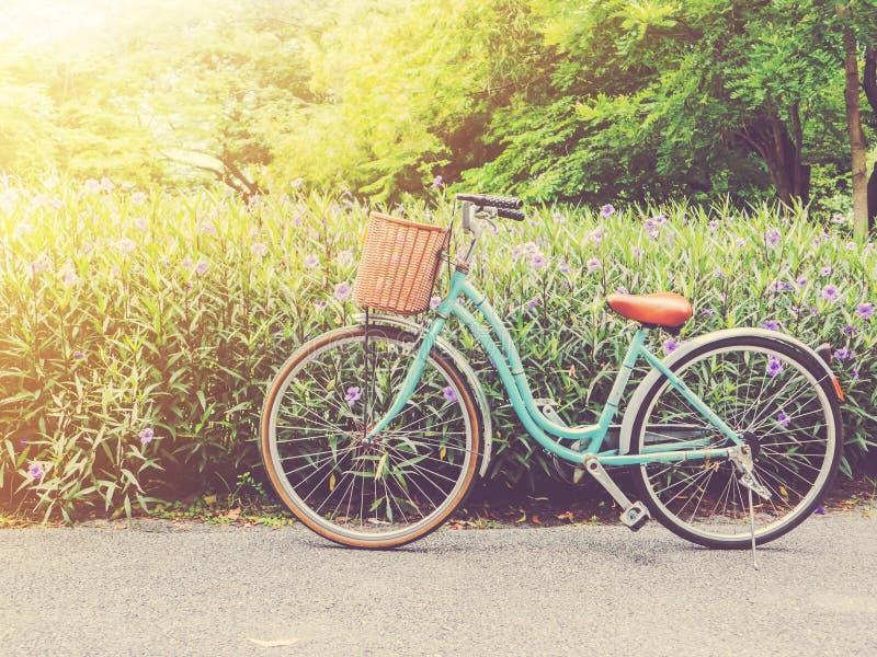 Weinlesefahrrad im Park bei Sonnenuntergang lizenzfreie stockbilder