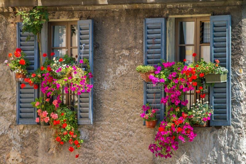 Weinlesefenster mit frischen Blumen stockfotos