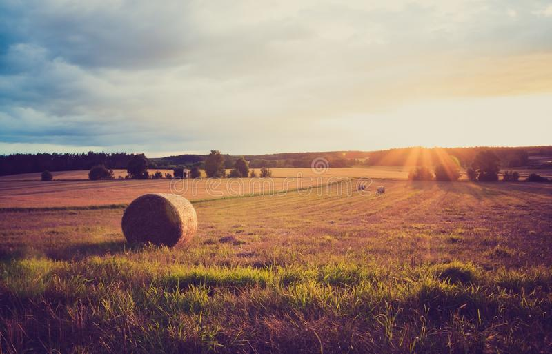 Weinleselandschaft von Strohballen auf Stoppelfeld stockfotografie