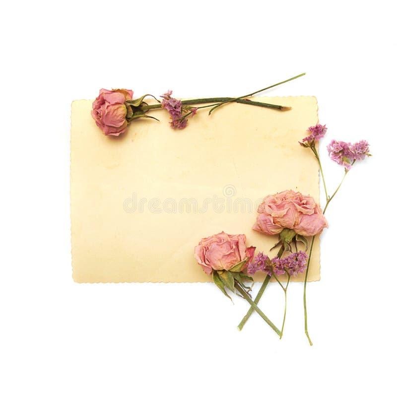 Weinlesepapier, Rosen und violette Blumen stockbilder