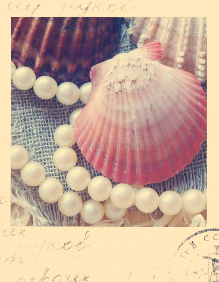 Weinleseshell und -perlen polaroid lizenzfreie stockbilder