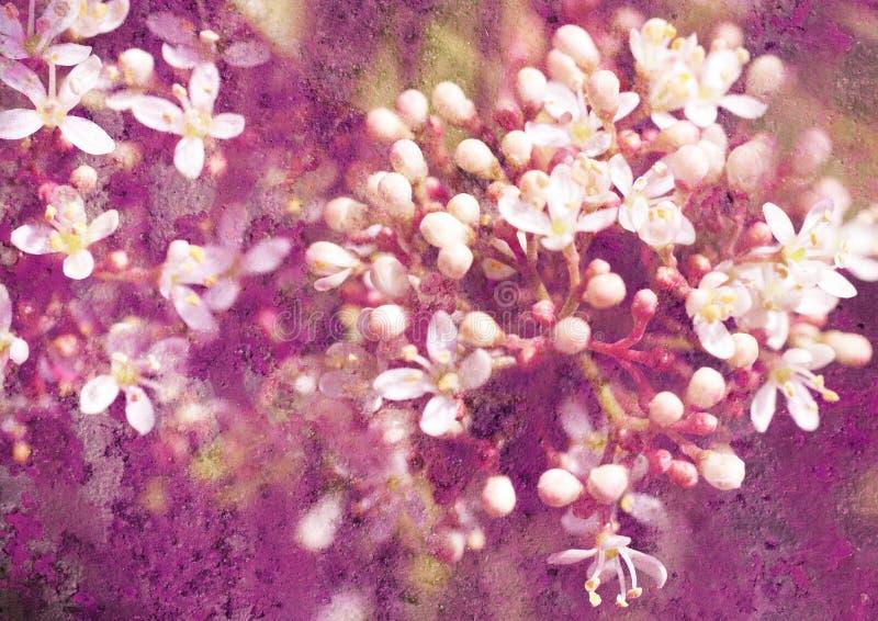 Weinlesestilisiert Blumenabbildung stockfotos
