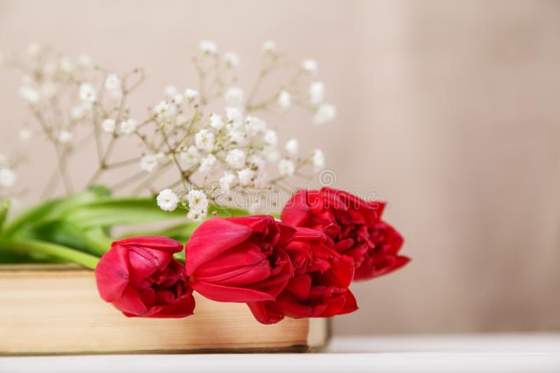 Weinlesestillleben mit roten Tulpen eines Frühlinges und einem Buch auf einem beige Hintergrund Muttertag, Konzept der Frauen Tag lizenzfreie stockbilder