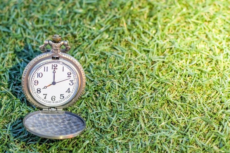Weinlesetaschen-Golduhr mit dem grünen Gras, abstrakt für Zeitkonzept mit Kopienraum lizenzfreies stockfoto