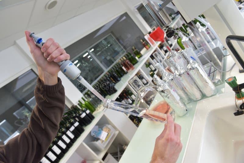 Weinprüfung der qualitätskontrolle im Labor stockbilder