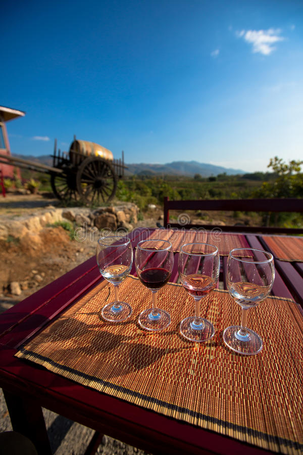 Weinprobegläser lizenzfreie stockbilder