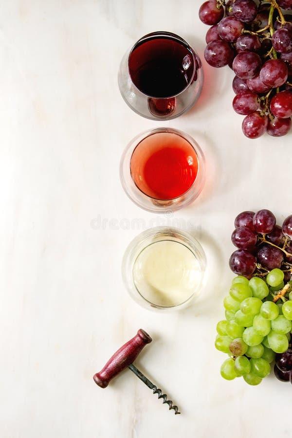 Weinsorte lizenzfreie stockfotos