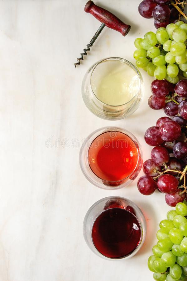 Weinsorte stockfotografie