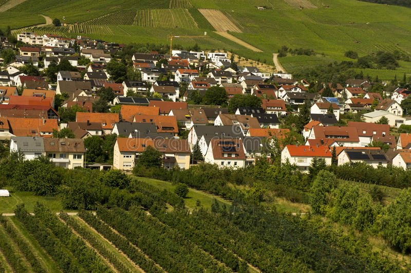 Weinstadt. Vineyard and residential district in Weinstadt city Baden Wurtemberg, Germany stock image