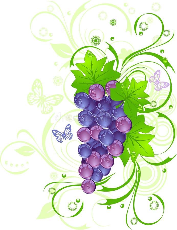 Weinstock mit Tropfen lizenzfreie abbildung