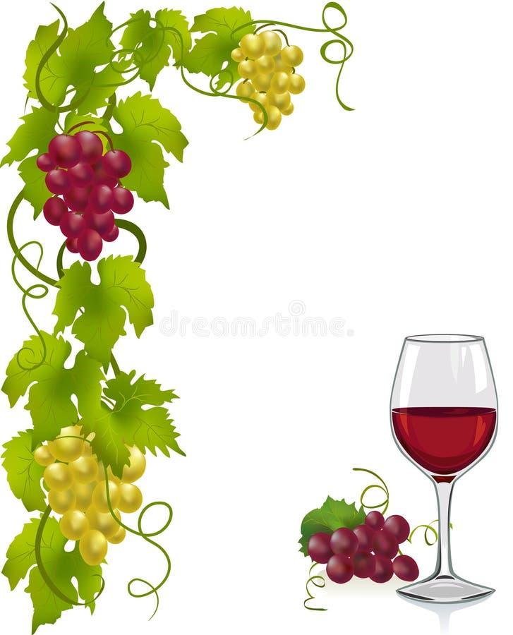 Weinstock- und Weinglas lizenzfreie abbildung