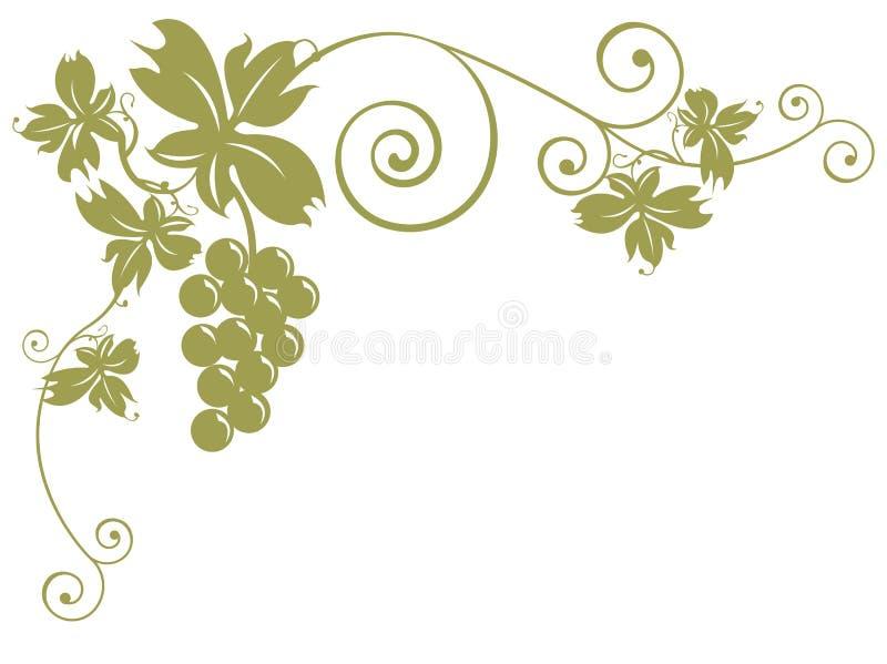 Weintrauben und Blätter stock abbildung