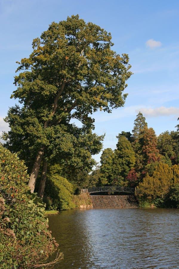 Download Weir e riverbank foto de stock. Imagem de rural, fora, campo - 532414