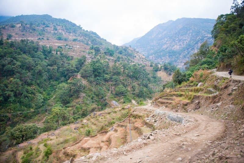 Weise auf dem Berg für Trekking stockfotos