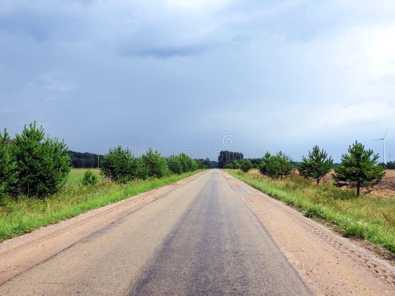 Weise, Bäume und Himmel vor Regen, Litauen lizenzfreie stockfotografie