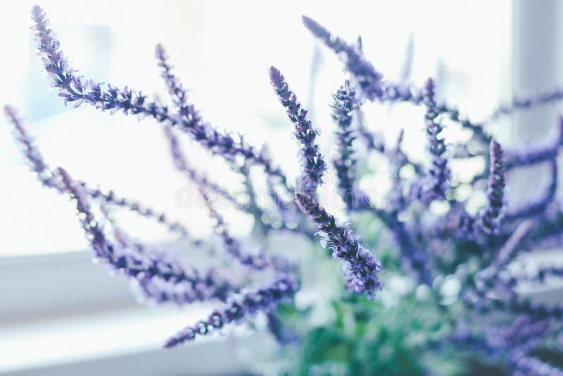 Weise Blumen auf einem hellen Hintergrund in der Unschärfe auf Fensterhintergrund stockfoto