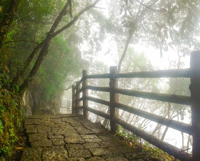 Weise zum Paradies, Reise nach Arwah höhlt in Meghalaya aus lizenzfreie stockfotos