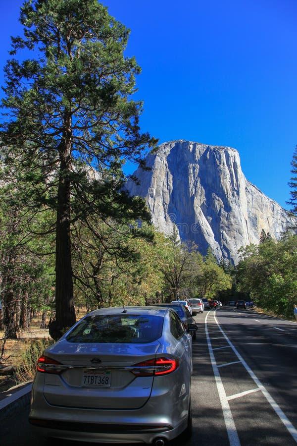 Weisenkopf zu Yosemite Nationalpark in US lizenzfreie stockbilder
