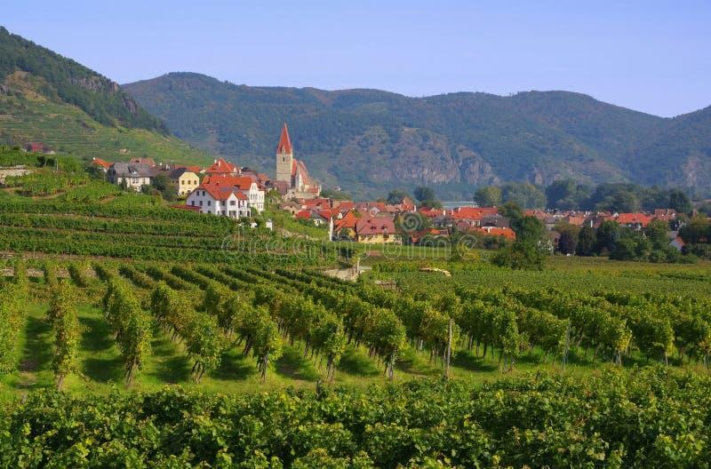 Weissenkirchen in Wachau stockbild