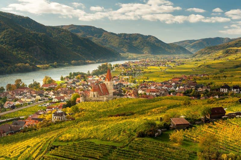Weissenkirchen Wachau Austria en otoño coloreó las hojas y viney foto de archivo