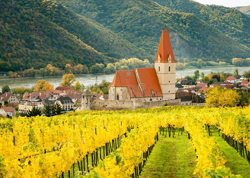 Weissenkirchen Wachau Austria en otoño coloreó las hojas y viney fotos de archivo libres de regalías