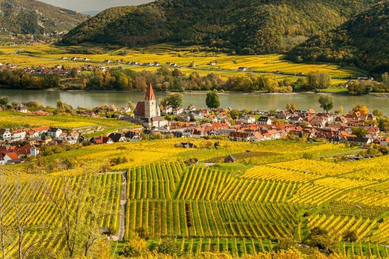 Weissenkirchen Wachau Austria en otoño coloreó las hojas y viney imágenes de archivo libres de regalías